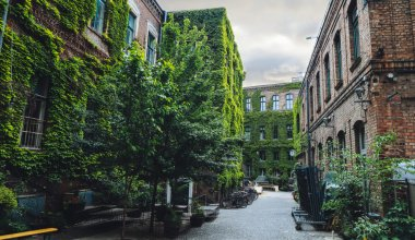 A photo of street with trees and greenery growing on the sides of the buildings